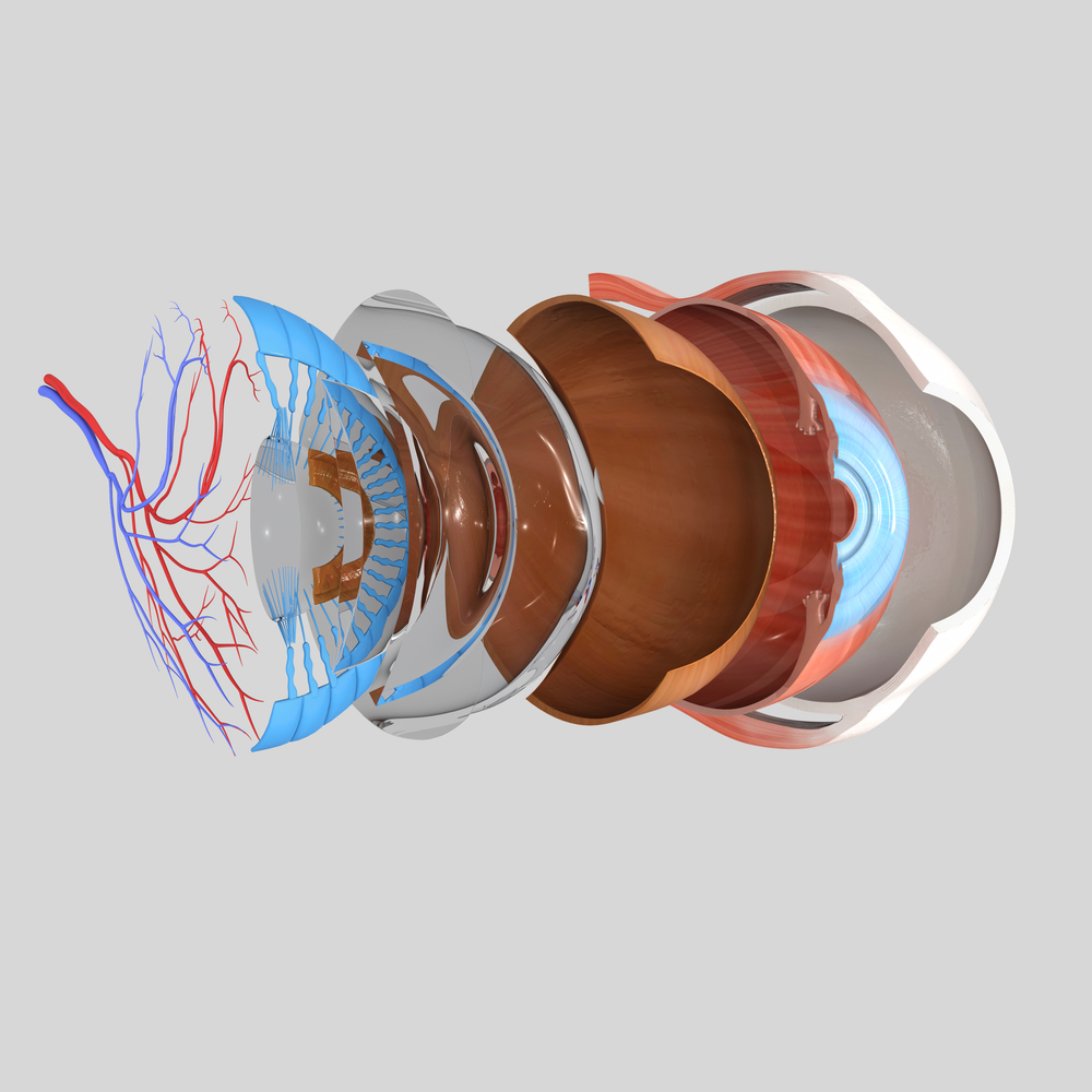 Florida Retina Consultants | Retina Specialists Lakeland Florida